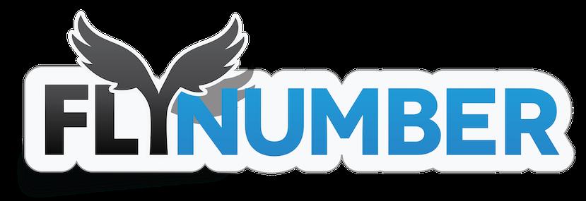 FlyNumber Logo