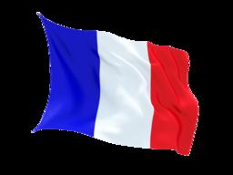 Paris, France prefix: 33-1